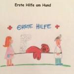 Erste_Hilfe_Kurs
