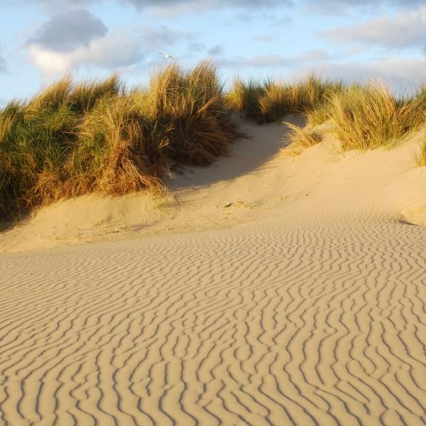 Holland_2012_4