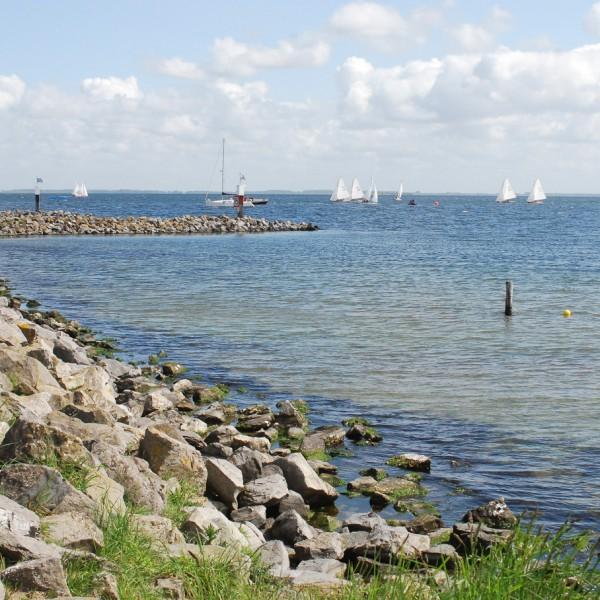 Holland_2012_3
