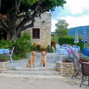 Provence_2013_0