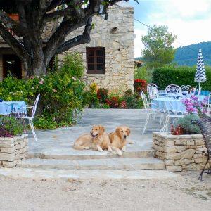 Provence_2013_1