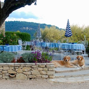 Provence_2013_2