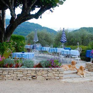 Provence_2013_3