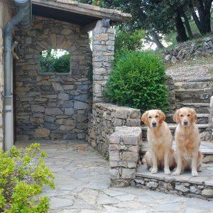 Provence_2013_4