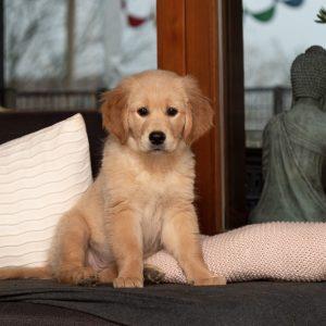 Lieblingsplatz: die Couch